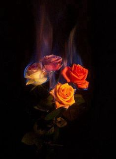 Burning Flowers II by Mat Collishaw Burning Flowers, Burning Rose, Aesthetic Iphone Wallpaper, Aesthetic Wallpapers, Aesthetic Roses, Aesthetic Black, Aesthetic Grunge, Fire Photography, Fire Flower