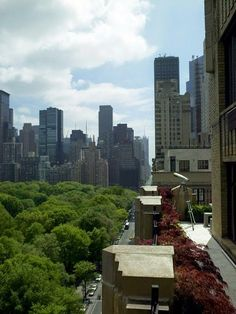 Donna Karan's Manhattan Apartment ~ Interiors and Design Less Ordinary