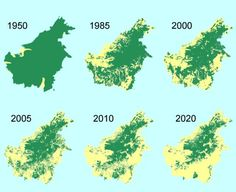 THE BAD.SAY NO TO PALM OIL. The shrinking forest cover in Borneo threatens orangutans and many other rainforest animals.