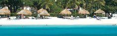 Set sail for the Divi Village Golf & Beach Resort in Oranjestad, Aruba