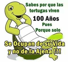 Totalmente de acuerdo con la tortuga.