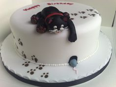 This cake won the bronze award in the sugarpaste class at the Tameside College annual food competitions Birthday Cake For Cat, Pretty Birthday Cakes, Beautiful Cakes, Amazing Cakes, Fondant Cakes, Cupcake Cakes, Kitten Cake, Dog Cakes, Crazy Cakes