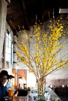 focithia centerpiece couple tall arrangements of forsythia will florals centerpi - Forsythia Arrangements