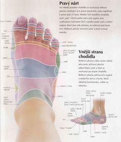 Reflexology Massage, Foot Massage, Body Fitness, Health Fitness, Holistic Medicine, Unwanted Hair, Healthy Lifestyle Tips, Diabetes, Reiki