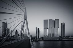 Rotterdam Skyline from Erasmus Bridge Selenium