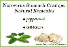 Peppermint and ginger make fabulous. Natural remedies for Norovirus stomach cramps! Stomach Flu Remedies, Home Remedies For Flu, How To Cut Onions, Natural Healing, Holistic Healing, Pregnancy Health, Natural Health Remedies, Homeopathy