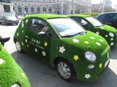 Daisy car