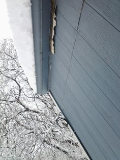 2/25/2013 snow, about a ft of snow on our roof