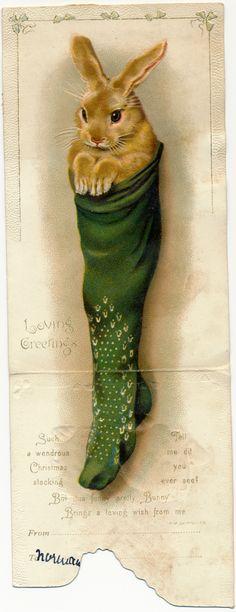 Victorian Rabbit Christmas card                                                                                                                                                                                 More