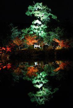 Night reflection in Kyoto, Japan: photo by fukumix, via Flickr