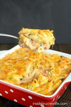 CONVERT TO GF--by using gf noodles, bacon, ranch etc. Chicken Bacon Ranch Pasta Bake - a delicious and cheesy pasta bake that will satisfy everyone at the dinner table Frango Bacon, Chicken Bacon Ranch Pasta, Bacon Pasta, Baked Chicken, Broccoli Pasta, Cheesy Chicken, Soy Chicken, Onion Chicken, Zucchini Pasta