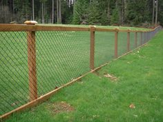 Cheap And Easy Cool Tips: Aluminum Fence Spaces silver chain link fence.Dog Fence On A Budget farm fence privacy. Hog Wire Fence, Chain Fence, Farm Fence, Backyard Fences, Garden Fencing, Fenced In Backyard Ideas, Horse Fence, Backyard Privacy, Black Chain Link Fence