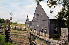 Love the barns & the fences.