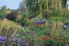 Staudengarten Gross Potrems Gartengestaltung Wildstaudengarten Garten Staudengarten Naturgarten