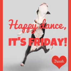 Happy Friday! 7 days till our Launch! xoxoxo