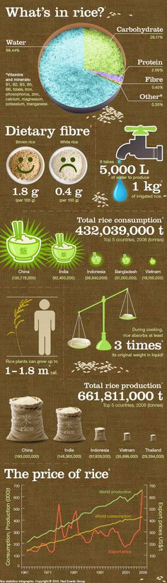 How much do we know about rice? Let this Infographic guide you.