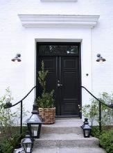 玄関には観葉植物が良く似合う