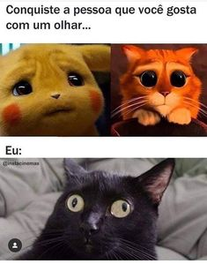 I scoured the internet and found the top 20 real estate memes Cute Animal Memes, Funny Animals, Cute Animals, Funny Cats, Memes Humor, Funny Images, Funny Pictures, Little Memes, Otaku Meme