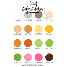 Color Palette 4 By: