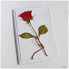 misha_cards / Ruža