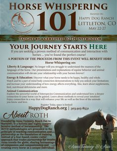Horse Whispering 101 is our brand new training experience geared towards the beginning or returning horse enthusiast, competitor, hobbyist, or professional. Let ROTH teach you not only the care and handling needed for a happy and healthy horse, but also the most important factor, the language. All of the ROTH methodologies are founded in a comprehensive understanding of the language of Equus.