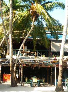 5 Best BVI Beach Bars by Boat from St. John - Foxy's Tamarind Bar and Grill
