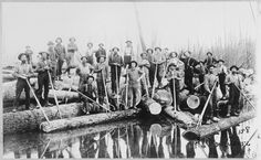 "Loggers were usually single men in their twenties. During the winter, they worked dawn to dusk, six days a week, cutting, hauling, and piling logs. In spring, many worked as ""river drivers,"" floating logs downriver to the sawmill. Their wages ranged between $ 15 and $ 26 a month, plus room and board for winter work and slightly higher for river driving. (W. J. Beal, Michigan, 1901)"