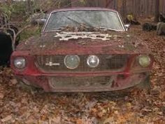 Shelby Mustang.. sacrilege What a beauty, poor baby needs some TLC
