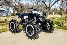 Can-Am Renegade buil