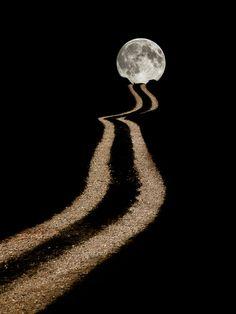 ~moonlit path~