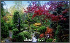 Zahrada plná čarověníků .... http://wbgarden.com