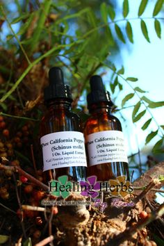 California pepper tree leaf extract  Highly by HealingHerbsByRene, $14.95