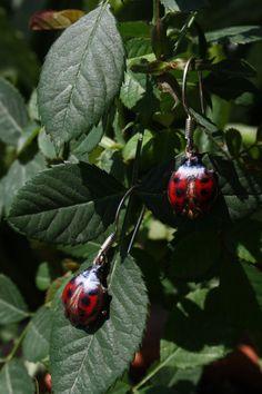 enamel earrings copper // ladybug // enamal jewelry