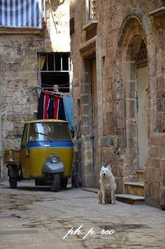 #Taranto Città Vecchia. Semplicemente unica pur nelle sue eterne contraddizioni. Foto di Pasquale Reo