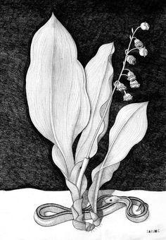 VEGETAVISIÓN VI Serie de dibujos a lápiz. El silencio de las plantas.  SAZUME www.sabinablasco.blogspot.com