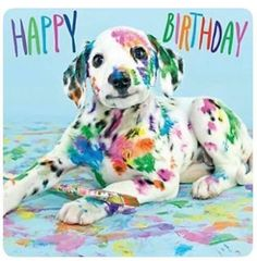 Happy Birthday with paint-covered Dalmatian pup Cute Puppies, Dogs And Puppies, Cute Dogs, Cute Babies, Chihuahua Puppies, Doggies, Cute Baby Animals, Funny Animals, Dalmatian Dogs