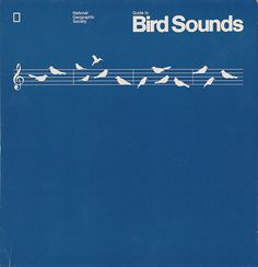 Guide to Bird Sounds by Nathan Godding, via Flickr