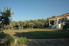 View of the Gera's Olive Grove ESTATE Lodges, Acre, Natural Beauty, Greece, Country Roads, Island, Traditional, Landscape, Greece Country