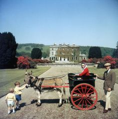 """edithshead: """" The Marquess and Marchioness of Waterford Curraghmore County, Waterford, Ireland photo by Slim Aarons, 1970 """" Richard Avedon, Slim Aarons Prints, Les Kennedy, Star Of The Day, Marquess, Moving To California, High Society, Hollywood Stars, Taking Pictures"""