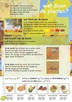 Wat doen de planten in de herfst? @keireeen Kids Gifts, Language, School, Seasons, Projects, Biology, Blue Prints, Seasons Of The Year, Languages