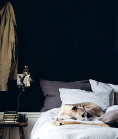 Dog / Moody bedroom styling / Lobster and swan / Magical interiors with - in detail by Hans Blomquist