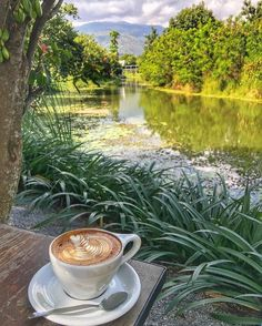 Chiang Mai Best Coffee Shops What To Do Before You Travel Before I go on a brand new trip, whatever the reason, stress does not fall out of my way. Fresh Coffee, I Love Coffee, My Coffee, Brown Coffee, Morning Coffee, Chiang Mai, Coffee Cafe, Coffee Shops, Best Coffee Shop