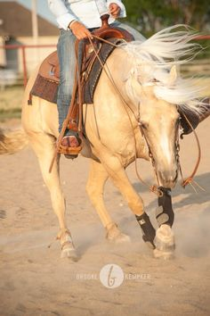 Reining horse spin. nothing is greater feeling than when you are spinning your horse!     http://www.dhutq.com/p