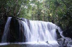 Các hoạt động vui chơi khám phá tại Phú Quốc chủ yếu là các hoạt động dã ngoại ngoài trời, có thể kể đến như  Câu Cá, Lặn Ngắm San Hô, Khám Phá Đảo Hoang, Câu Mực Đêm hay Leo Núi Tắm Suối, Khám Phá Rừng Nguyên Sinh, …