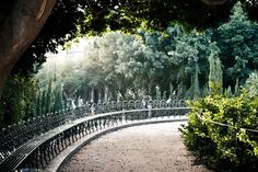 Villa Bellini. catania, sicily. This fence always made me imagine I was in England for the few steps I walked through it.