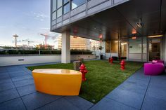 The Martin rooftop dog park