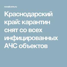 Краснодарский край: карантин снят со всех инфицированных АЧС объектов