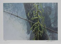 Robert Bateman Print Sasquatch Art Bigfoot Yeti Limited Edition | eBay