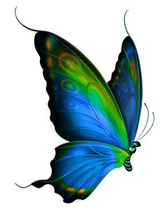 butterfly, Hand-painted Butterfly, Drawing Butterfly, Blue Butterfly PNG Image and Clipart Butterfly Clip Art, Butterfly Drawing, Butterfly Pictures, Butterfly Painting, Butterfly Wallpaper, Butterfly Tattoos, Green Butterfly, Colorful Butterfly Tattoo, Realistic Butterfly Tattoo