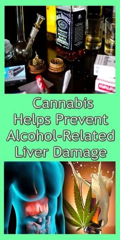 4d3c1080ce6f Cannabis Helps Prevent Alcohol-Related Liver Damage – Something Logical
